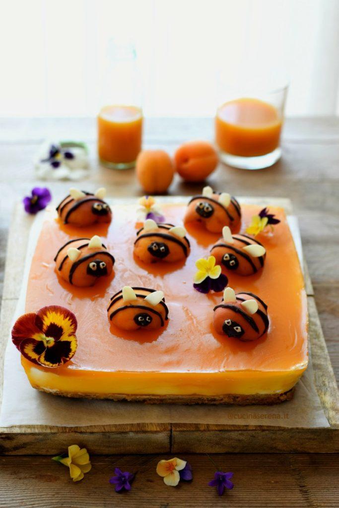 cheesecake apicocca