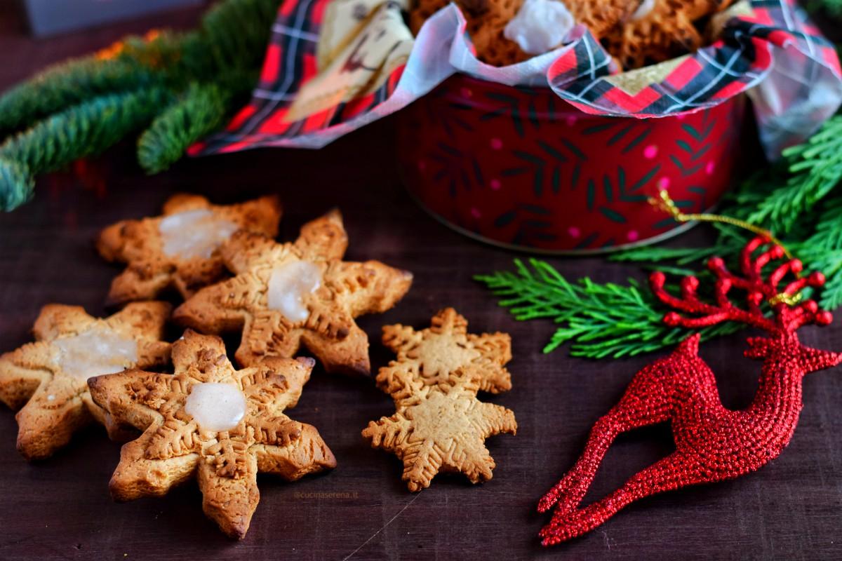 Lebkuchen biscotti tedeschi di natale