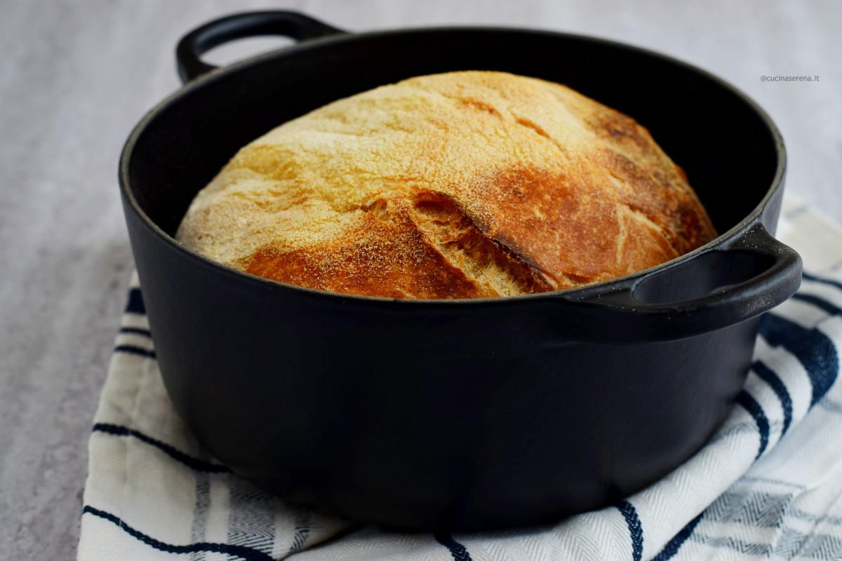 Pane senza impasto nella foto inquadrato da vicino nella pentola adagiata su un canovaccio