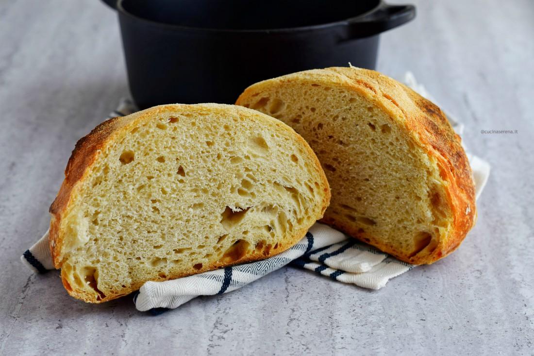 ricetta pane senza impasto, nella foto pane tgliato in due in cui si vede bene la mollica compatta adagiato su un canovaccio e sullo sfondo la pentola in ghisa nel quale è stato cotto