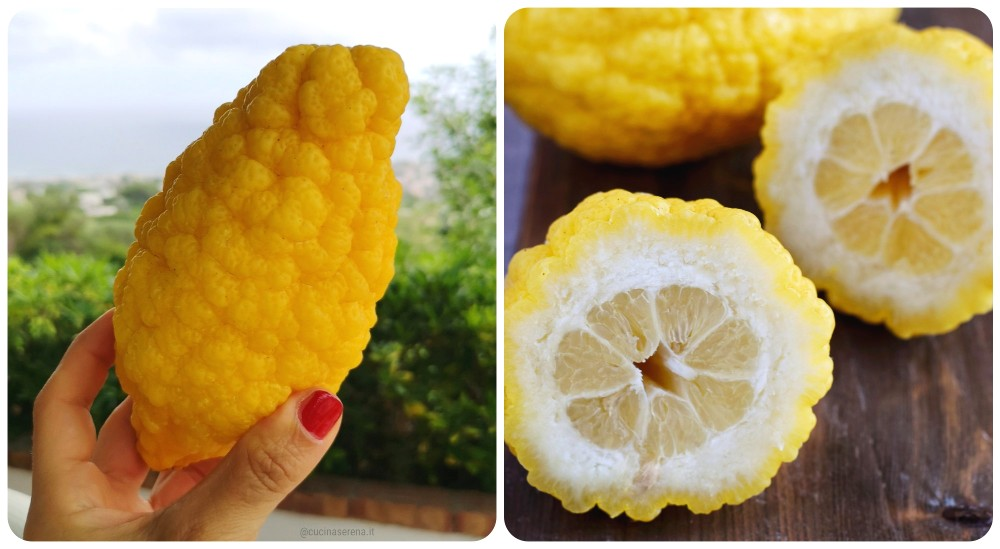 Limoni di Procida aspetto esterno e interno